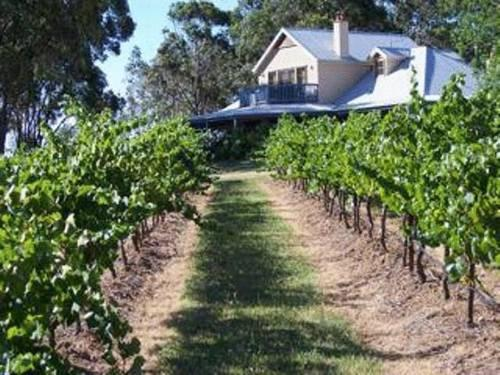 Photo: Spicers Vineyards Estate