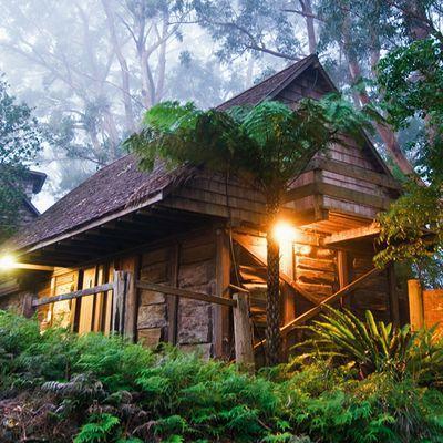 Photo: Binna Burra Mountain Lodge Beechmont