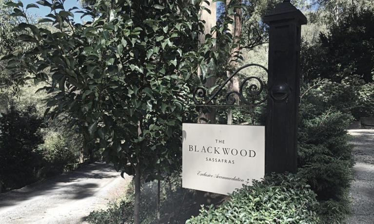 Photo: The Blackwood Sassafras