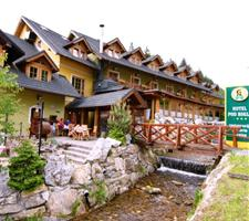 Hotel Pod Roglo, Zreče