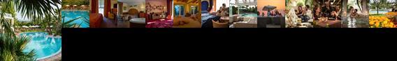 Color Hotel