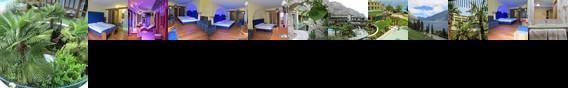Hotel Alexander Limone sul Garda