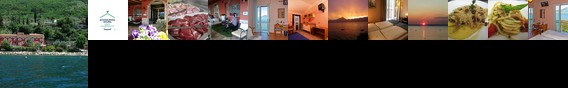 Menapace Hotel Torri del Benaco