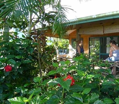 Aroa Kainga - dream vacation