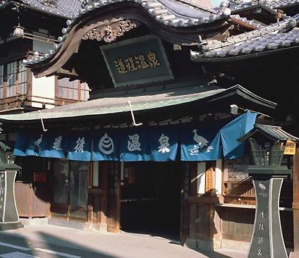 Sachiya - dream vacation
