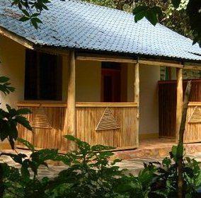 Primate Lodge - dream vacation