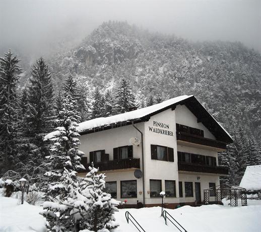 Pension Waldkrieber - dream vacation