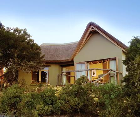 Kuzuko Lodge Addo - dream vacation