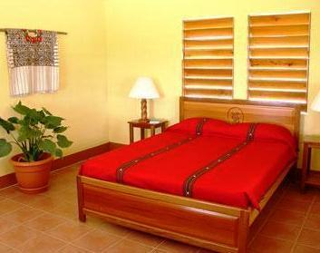 Casa Del Caballo Blanco - San Ignacio -