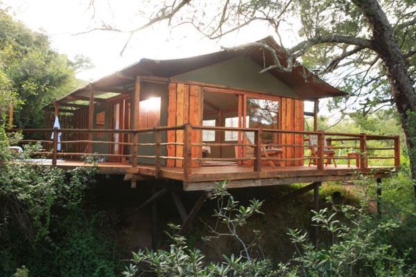 Addo Elephant Back Safaris and Lodge - dream vacation