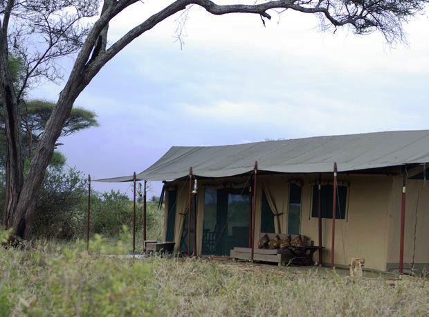Lemala Ngorongoro - dream vacation