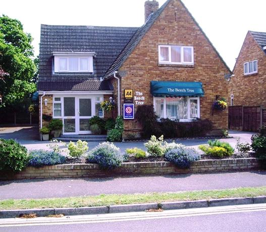 The Beech Tree Guesthouse Christchurch England - dream vacation