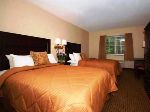 Comfort Inn Albany / Glenmont - Albany -