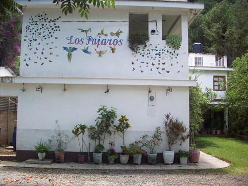 Hotel Los Pajaros - dream vacation