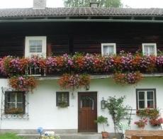 Bauernhof Niedermaisgut - dream vacation