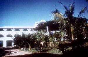 Tropicana Hotel - dream vacation