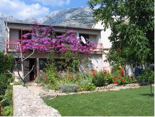 Apartments Paunovic - dream vacation