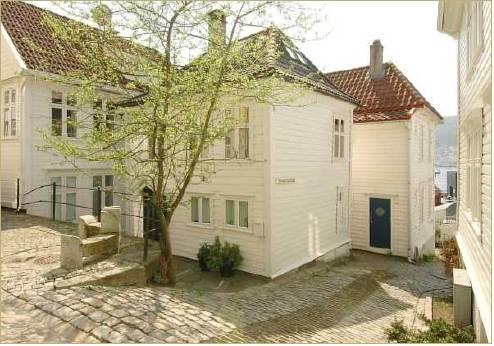 Alvehuset - dream vacation