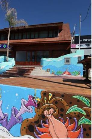 La Maquinita Surf & Hostel - dream vacation