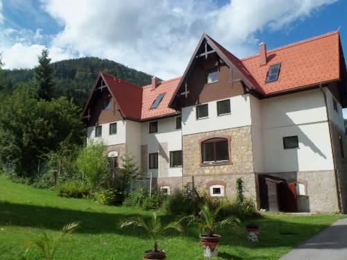 Villa Wellspacher - dream vacation