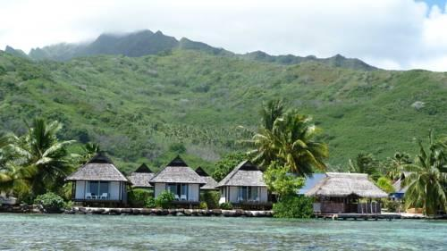 Pension Motu Iti - dream vacation