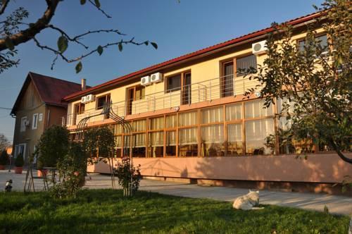 Andronic Hotel Timisoara - dream vacation