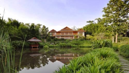 Pa Sak Tong - Chiang Rai -