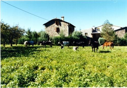 Casa Rural La Vall del Cadi - dream vacation