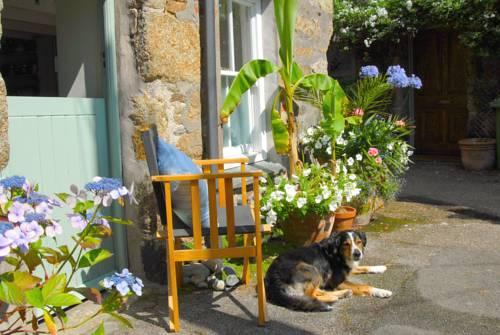 Orchard Cottage Penzance - dream vacation