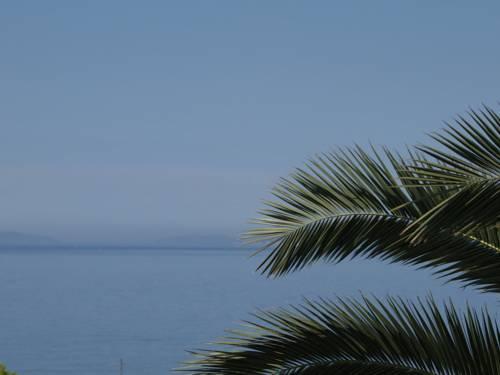 Villa Palmas - dream vacation