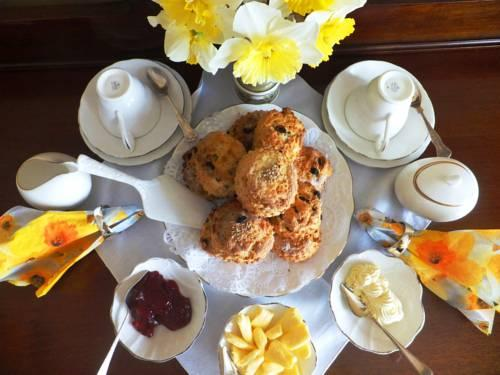 Park South Bed & Breakfast - dream vacation