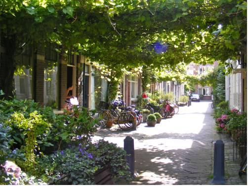 Where Els Haarlem - dream vacation