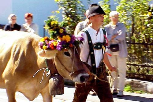 Pension Talblick Wangle - dream vacation