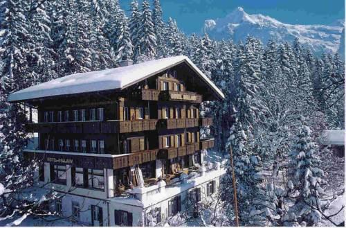 Hotel Bellary - dream vacation