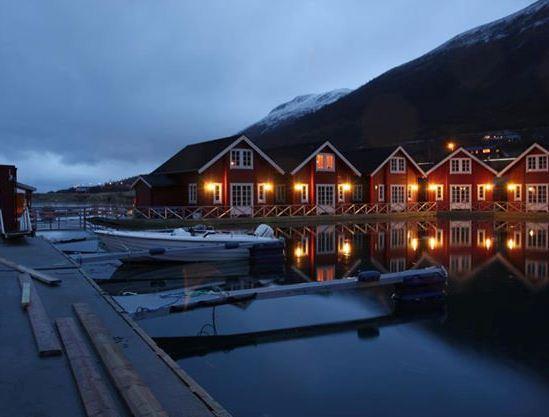 Lyngen Havfiske og Tursenter - dream vacation