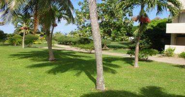 1 Br Oceanview Apartment - Ocho Rios - dream vacation
