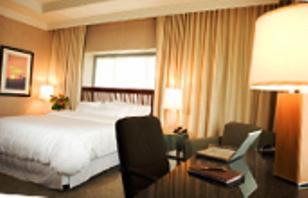 Nitefall Motel - dream vacation