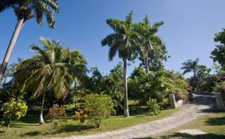 1 Br In Great House - Hibiscus Suite - St Anns Bay - dream vacation