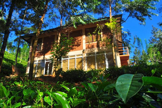The Tea Cottages Resort & Spa - dream vacation