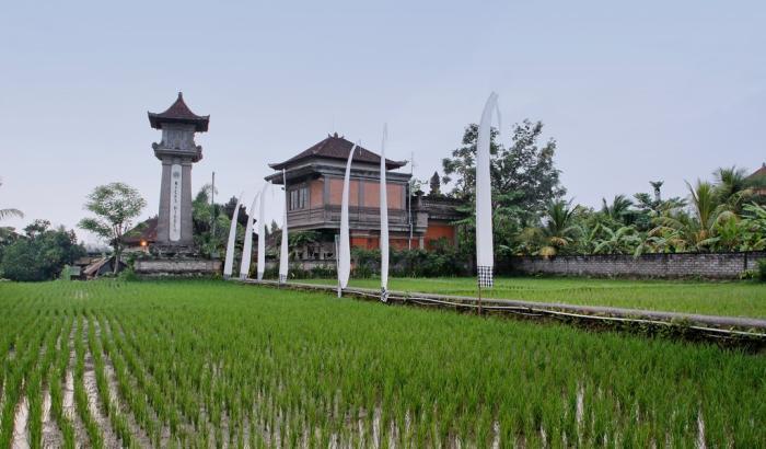 Nicks Hidden Cottages Bali - dream vacation