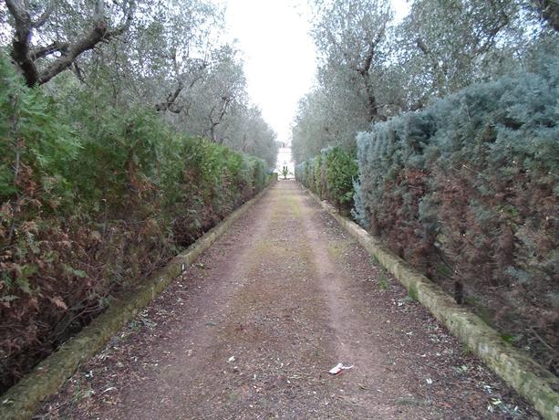 Puglia XVIII Century Country House with Trullo - dream vacation