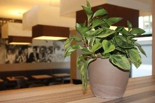 Smart Stay Hotel Frankfurt - dream vacation