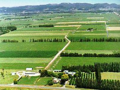 Whakatane Homestay Leaburn Farm - dream vacation