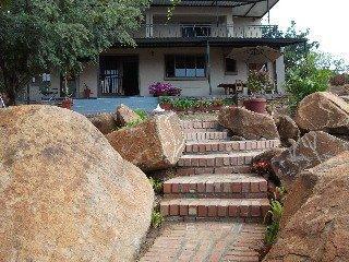 Meerkat Manor - dream vacation