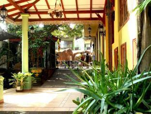 Green Land Guest House Pinnawala - dream vacation