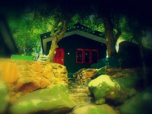 Medalanda Eco Resort - dream vacation