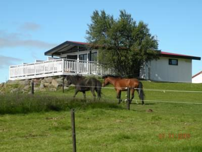 Jadar Holiday House - dream vacation