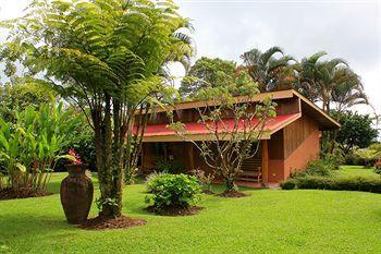 Catarata Eco Lodge - dream vacation