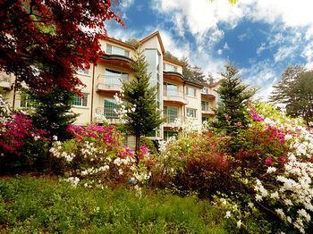 Pyeongchang Greenhill Resort - dream vacation