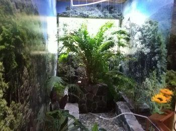 Rio Macho Lodge - dream vacation